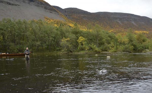 dryflyfishing-for-grayling-in-norway