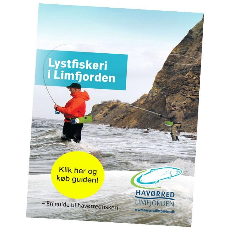 Lystfiskeri i Limfjorden - En guide til havørredfiskeri,limfjorden,havørredfiskeri i limfjorden,fiskeguide til limfjorden,fiskepladser limfjorden