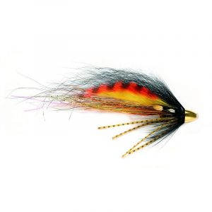 Skjern-Å-Tiger-flies