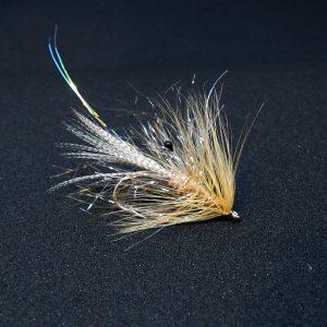 Alive Shrimp - Alive kystfluen