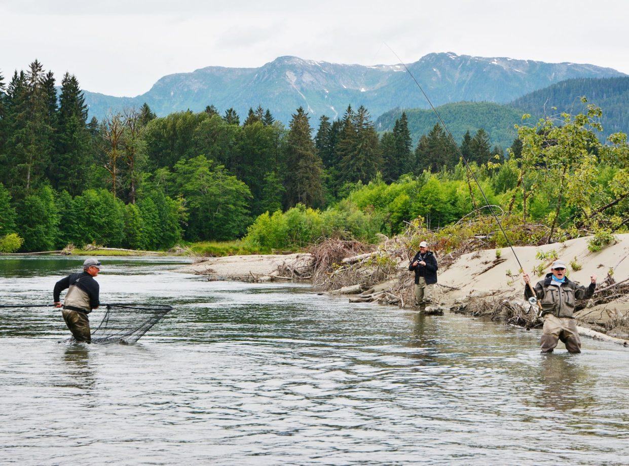 Kongelaks i British Columbia